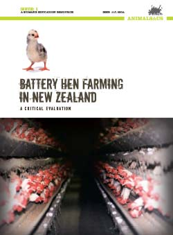 Battery Hen Farming in New Zealand: A Critical Evaluation